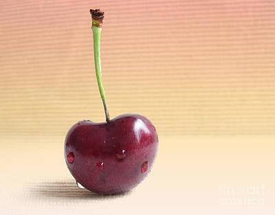 Cherry Portrait Two Print by Arlene Carmel