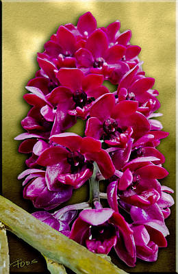 Photograph - Cherry Red Orchid by Roy Foos