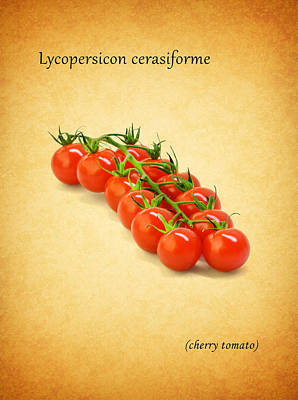 Food And Beverages Photograph - Cherry Tomato by Mark Rogan