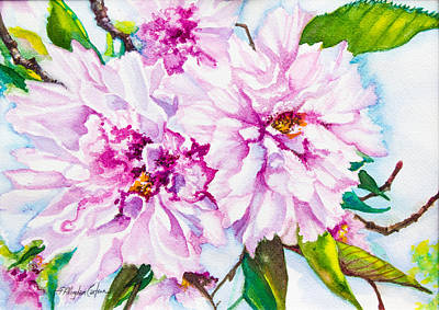 Cherry Blossoms Painting - Cherry Tree Blossoms by Patricia Allingham Carlson