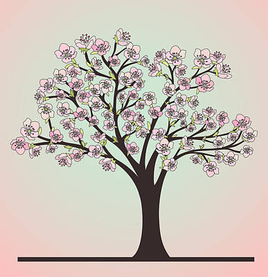 Cherry Trees Drawing - Cherry Tree With Blossoms by Olivera Antic