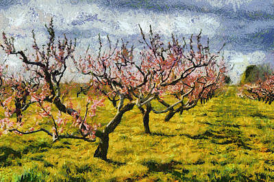 Cherry Blossoms Digital Art - Cherry Trees 3.0 by Michelle Calkins