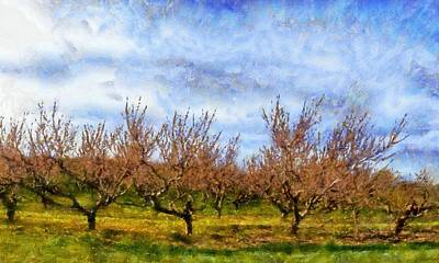 Oversized Digital Art - Cherry Trees With Blue Sky by Michelle Calkins