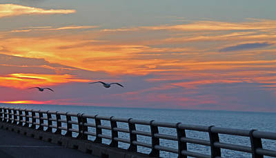 Photograph - Chesapeake Bay Bridge by Lily K
