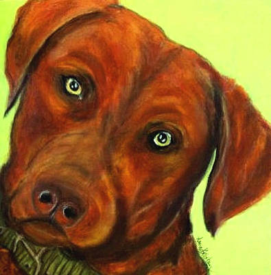 Painting - Chesapeake Bay Retriever - Hank by Laura  Grisham