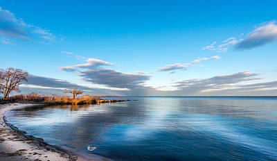 Animals Royalty-Free and Rights-Managed Images - Chesapeake Bay Sky by Patrick Wolf