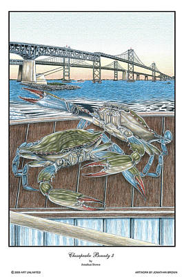 Blue Crab Drawing - Chesapeake Bounty 3 by Jonathan W Brown