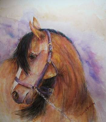 Horse - Bay -  Watercolor Portrait Original by Carolyn Gray