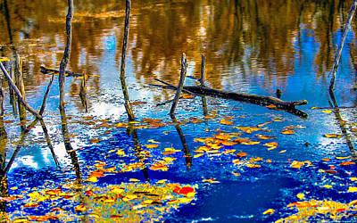 Photograph - Chestnut Lake Thousand Trails Preserve New Jersey by Bob and Nadine Johnston