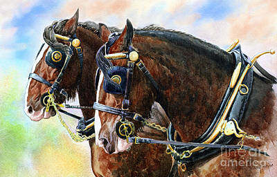 Chestnut Shire Horses Art Print by Anthony Forster