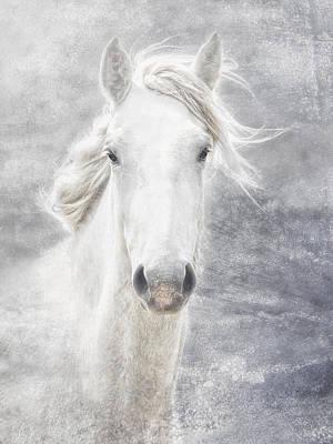 Wild Horses Photograph - cheval de la Camargue by Joachim G Pinkawa