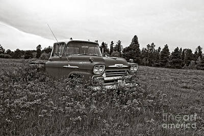 Photograph - Chevrolet Apache Colorado by Ron Chilston