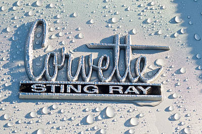 Corvette Photograph - 1966 Chevrolet Corvette Sting Ray Emblem -0052c by Jill Reger