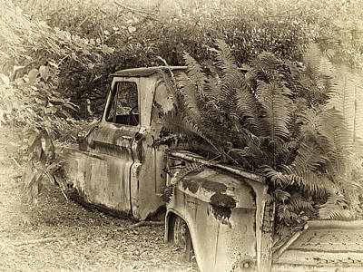 Photograph - Chevy Recycled by Sandra Anderson