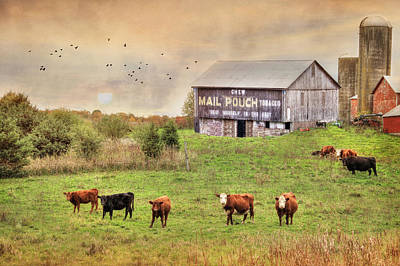 Mail Pouch Barn Photograph - Chew Mail Pouch by Lori Deiter