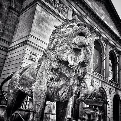 White Photograph - Lion Statue At Art Institute Of Chicago by Paul Velgos