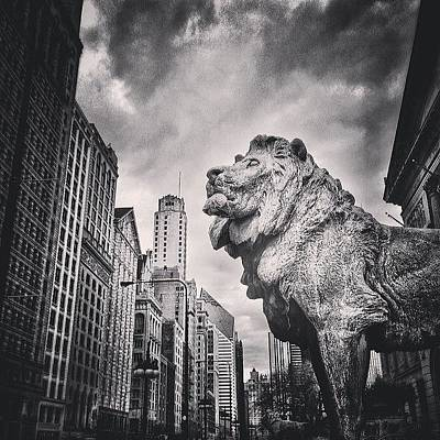 White Photograph - Art Institute Of Chicago Lion Picture by Paul Velgos