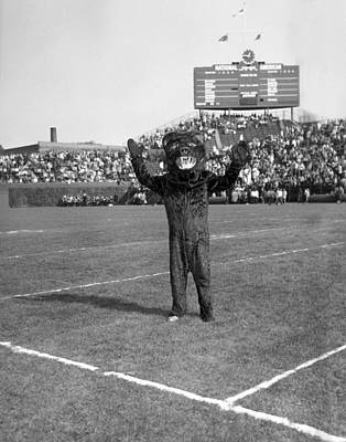 Cheers Photograph - Chicago Bears Mascot In Front Of Wrigley Field Scoreboard by Retro Images Archive
