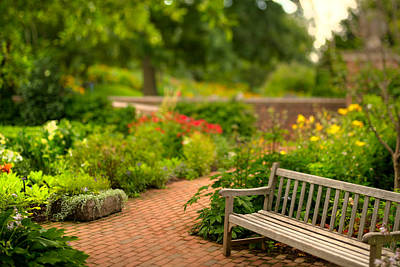 Chicago Botanic Garden Bench Art Print