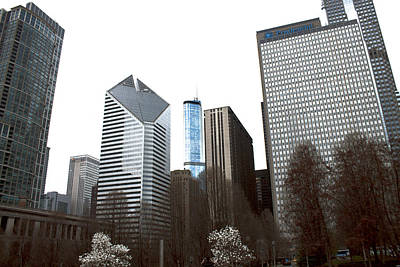 Photograph - Chicago Cityscape by Barbara Giordano