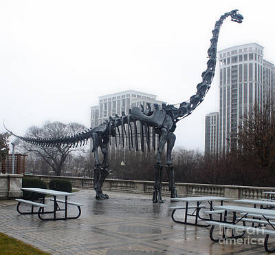 Photograph - Chicago Field Museum Dinosaur by Gregory Dyer