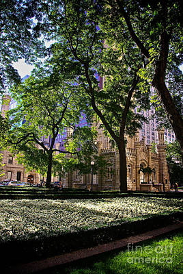 Recently Sold - Frank J Casella Royalty-Free and Rights-Managed Images - Chicago Morning in Water Tower Park by Frank J Casella