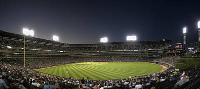 Sultry Plants - Chicago White Sox Ballpark by Patrick  Warneka