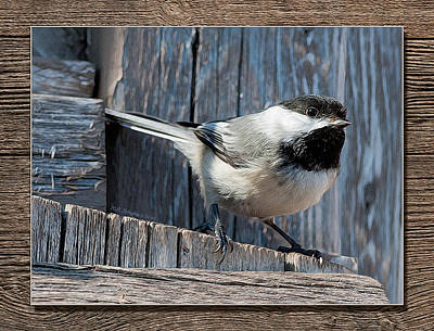 Photograph - Chickadee On Fence by WB Johnston