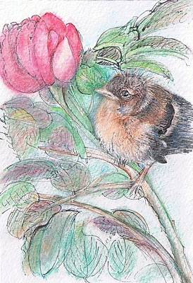 Painting - Chickadee And A Rose by Shan Ungar