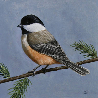 Chickadee Charm Art Print by Crista Forest