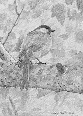Chickadee In The Rain Art Print