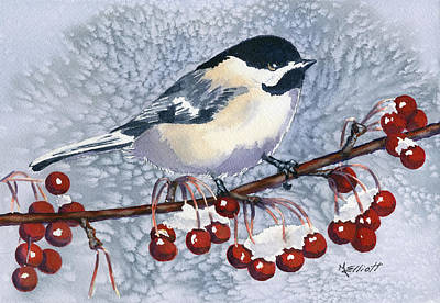 Chickadees Wall Art - Painting - Chickadee by Marsha Elliott