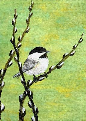 Chickadee On Pussy Willow - Bird 1 Art Print