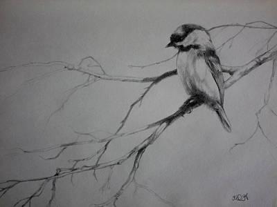 Chickadee Drawing - Chickadee Sketch by Derrick Higgins