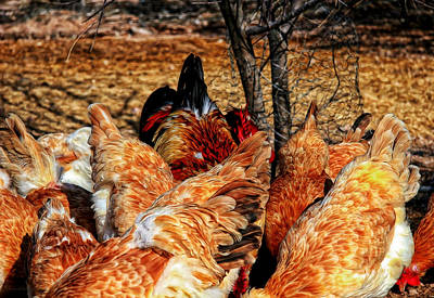 Chicken Wings Art Print by Barbara D Richards