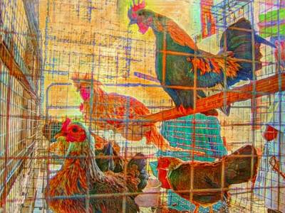 Painting - Chickens At The Ag Fair - Horizontal  by Lyn Voytershark