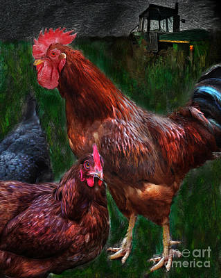 Digital Art - Chickens by Lisa Redfern