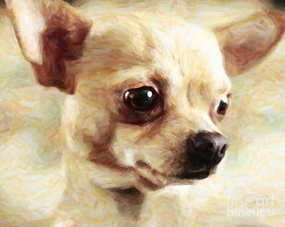 Fuzzy Digital Art - Chihuahua Dog - Painterly by Wingsdomain Art and Photography