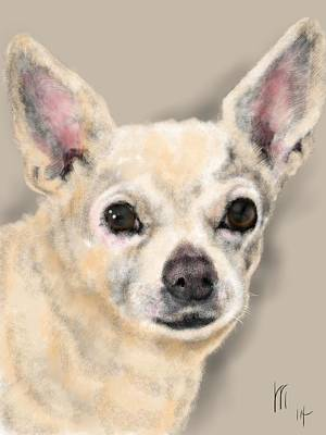 Chihuahua Digital Art - Chihuahua  by Lois Ivancin Tavaf
