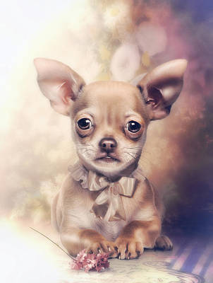 Chihuahua Puppy Art Print by Cindy Grundsten