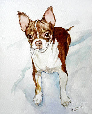 Painting - Chihuahua White Chocolate Color. by Christopher Shellhammer