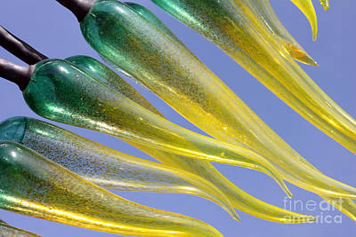 Photograph - Chihuly Abstract by Debbie Hart