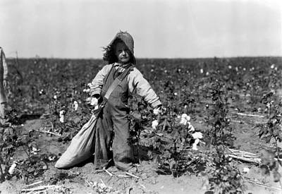 Photograph - Child Labor, C1910 by Granger