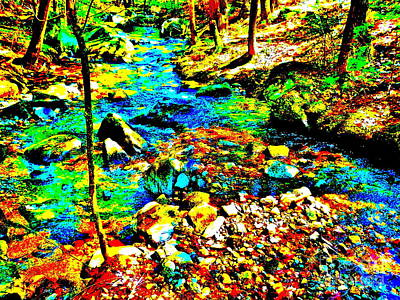 Photograph - Childs Brook Ultra 188 by George Ramos