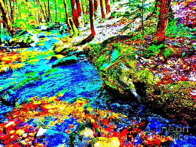 Photograph - Childs Brook Ultra 191 by George Ramos
