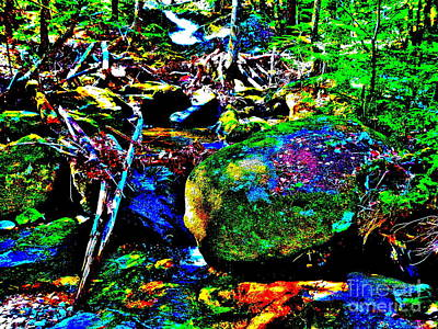 Photograph - Childs Brook Ultra 200 by George Ramos