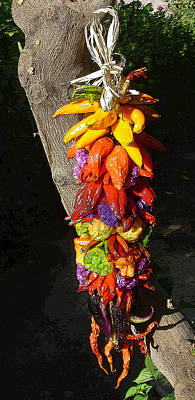Photograph - Chile Peppers by Sandra Selle Rodriguez