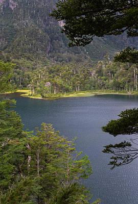 Chile South America Lago El Toro Art Print by Scott T. Smith