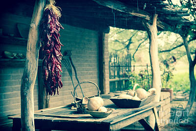 Photograph - Chiles De Tubac by Patty Descalzi