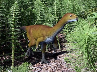Lush Mixed Media Photograph - Chilesaurus Is An Extinct Theropod by Nobumichi Tamura